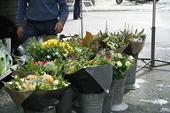 flower shop at Brugges Sunday market