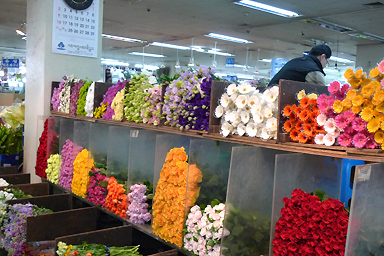 Seoul Yanjae Flower City