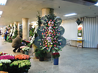 flower design at Seoul