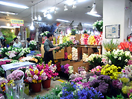flower arranging at Seoul Yangiae flower city